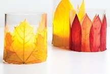 fall decor / by Kristen Wright Design