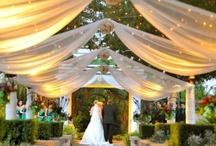 Weddings / by Haley Welsh