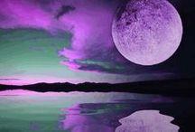 purple / by Susan O.