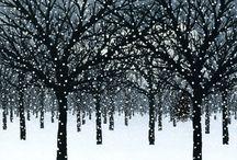 Winter Art / by Susan O.