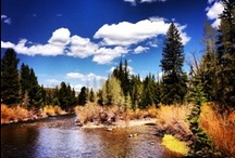 Colorado  / Pictures of our beautiful state. We're so lucky!