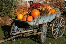 ★ ✩Fabulous Fall★ ✩ / by A Primitive Place & Country Journal Magazine