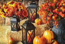 Fall Ideas / by Kayla Gragg