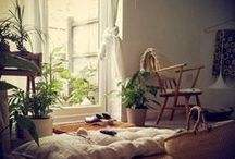 Intimate Interiors / by Hillarie Olsen