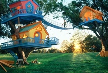Pays des Vermeilles - Wonderland