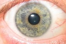 IRIDOLOGY STUDY / Scriptures (89 sec.) says these mystery's would be unfolded if you ate correctly the diet there  One of those mystery's is the iris readings to the body. Many do not and will not understand this part until they witness a healing a lesion, spokes-lines, rosary, etc. that will disappears after healings takes place in that mapped part of the body; (diet or other such events makes changes, if the diet, herb, isn't working no change, takes 3 mo.) my study for yrs- abt 12 classes from Griffin, LaDean / by SHERM SHERM