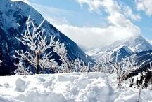 WinterWonderLand / * Winter * Winter * Winter * Winter * Winter * Winter * Winter *