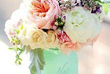 Blooms ➸➸ [Florals]
