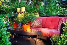 Herb & Garden