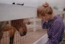 for my horse loving girl / by Amber Glanville
