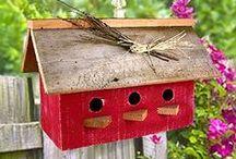 Birdhouse & Garden