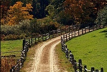 Country Roads Weaving Thru Your Heart / by Brenda Padgett
