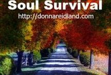 Soul Survival / Posts on Christian living, Bible study & devotions, and a plan to read through the Bible in a year.