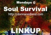 Mondays @ Soul Survival LINKUP / Mondays @ Soul Survival is a place where other bloggers link up posts that bring glory to God and encourage a love for His Word. Go to http://donnareidland.com/ to LINKUP.  THE THOUGHTS EXPRESSED ARE THOSE OF THE WRITER AND NOT NECESSARILY MINE.