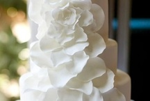 Bright Brides & Trends  / by Large Photo Blanket Save $68!!