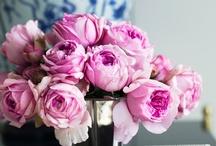 Flowers / by Kimberley Seldon