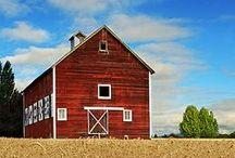 Beautiful Barns. / by Susan Duane
