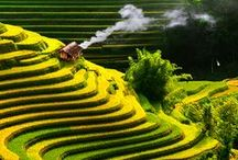 Asia - Vietnam