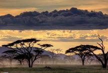 Africa. Beautiful. Diverse.