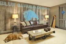 Man Caves / by Cheryl Draa Interior Designs