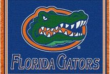 Florida Gators Stuff / Gator fans, you can proudly decorate your home, office, or dorm room with these unique, high quality University of Florida Gators logo products.  Also, a great way to spice up your next tailgate party!  Visit our website www.collegelogostuff.com