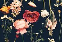 Florals! / A floral affair.