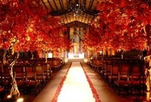 Jacq's Fall Wedding Ideas / by Jacque Diane
