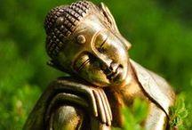 Buddhism / by Kat Johnson