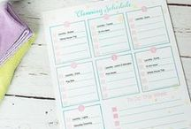 Real Cleaning / If thinking about cleaning makes your skin itchy and your eyes glaze over like mine....then this board is for you. I dislike cleaning, but I'm collecting a bunch of simple and easy ideas to keep my house clean. I've got lots of diy recipes for natural cleaning products as well as ways to be organized and quick with your cleaning.