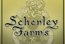 Schenley Farms History / Schenley Farms, Oakland,Pittsburgh, PA / by SimpleSue Hughes