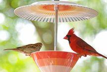 Bird Feeders +  Fountains  & Houses