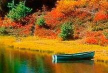 AUTUMN Changes (Shared Board) / The most beautiful of seasons when you live in New England! Pin pics, recipes, anything about autumn. No spam, ads or nudity please. To join let me know on the first board on my profile page. ~♥~