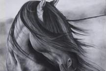 Equestrian / by Amanda Craig