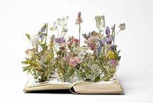 Libri e librerie - Books and bookshelves / by Progetto Didatticarte