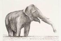 Elefanti - Elephants / by Progetto Didatticarte