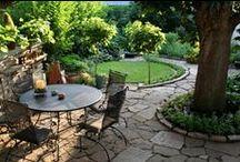 Garden & Yard / by Colleen