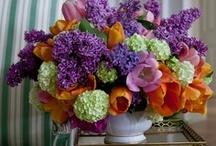 Fab Flowers / Flower Power. / by von Hemert Interiors