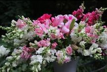 green, pink, white, blush flowers / wedding colors