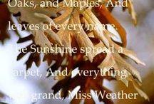 Seasons / by Phyllis Wilson