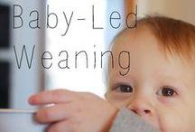 Littles - Baby Led Weaning / Baby-Led Weaning: skip the mush