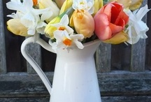 Seasonal: Spring (Easter) / All things related to springtime including Easter decor.