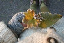 Autumn / by Valorie