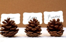 Pinecones / by Monica