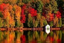 Fall: My Favorite Season / by Melanie Reiff