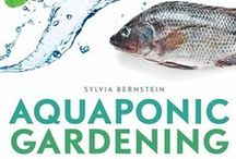 The Talapia Project / Aquaponics using Tilapia / by Heather