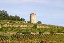 Vente Privée Jura  / Les vins de Stephane Tissot, producteur reconnu du Jura, mis à l'honneur en ce vendredi de dégustation chez iDealwine!