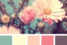 Color Inspiration / The coolest (and warmest) color palettes that get our creative juices flowing!