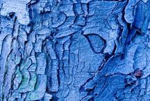 COLOR {BLUE -my favorite color} / Blue blue and more blue! It's my favorite color!!! / by NALU TRIBE
