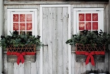Home: Window Boxes