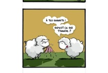 Mout' by me / Comics about history of sheeps, created by me.